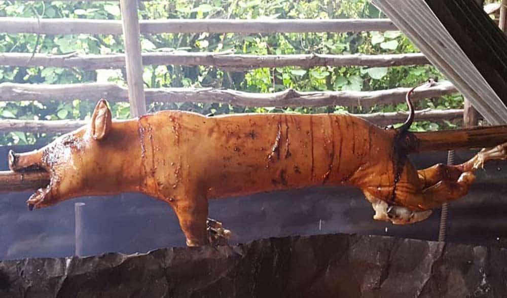 lechón asado cubano en púa